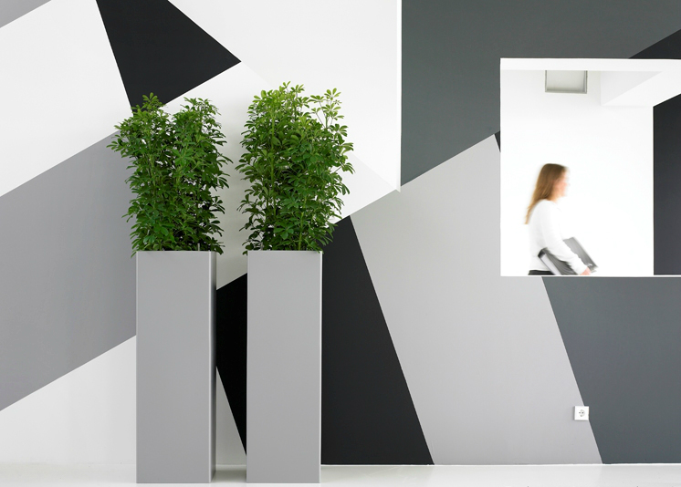 clever-office-planting