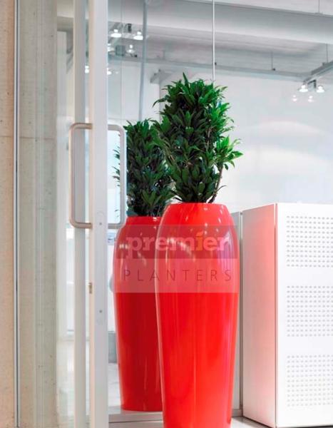 RH1 live-office-planting