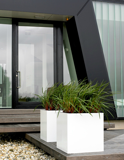modern-exterior-plants
