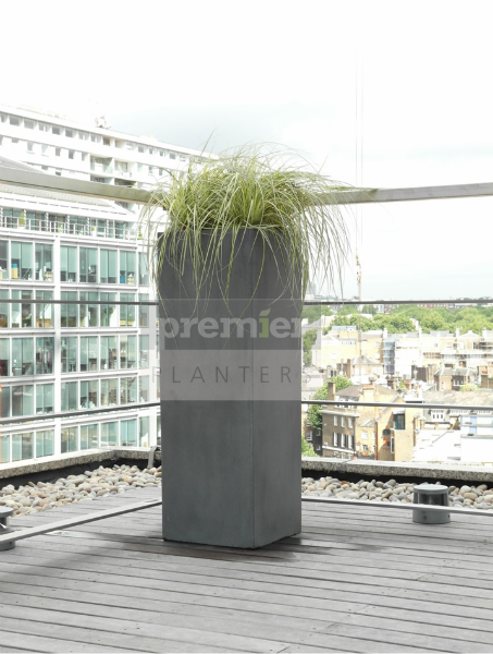 sw1-tall-terrace-planting