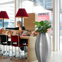 contemporary-design-plants