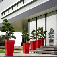 contemporary-exterior-plants