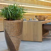 designer-indoor-plants