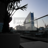 ec2-silhouette-of-palm-tree-on-london-terrace-at-dawn
