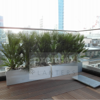 ec2-terrace-planting-used-to-screen-ugly-neighbouring-rooftops