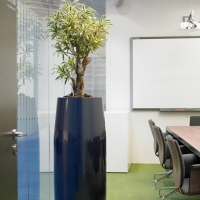meeting-room-planting
