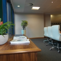 Eyecatching Office Area with Plants
