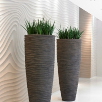 From Modern And Minimalist To Bold And Exotic, There Will Always Be Plants  That Can Complement And Enhance Your Corporate Image.