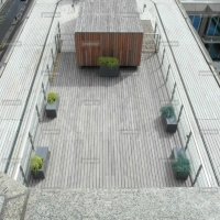 sw1-live-planting-on-london-terrace-decking