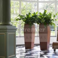 RH3 traditional-interior-planting