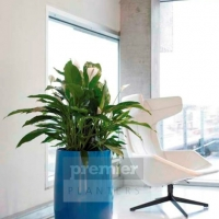 EC2A vibrant-plant-displays
